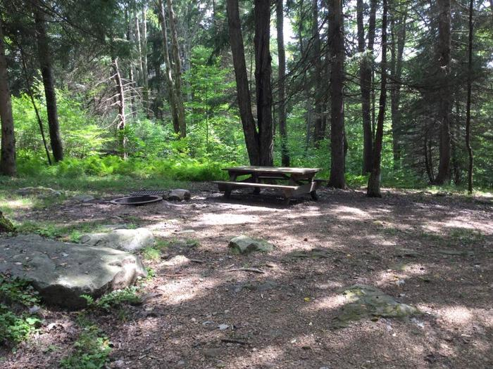 Loleta Recreation Area: Campsite 7