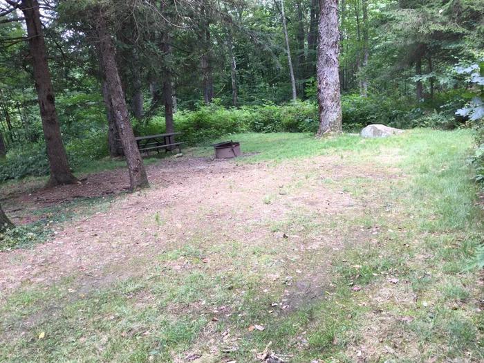 Loleta Recreation Area: Campsite 8