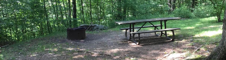 Loleta Recreation Area: Campsite 9