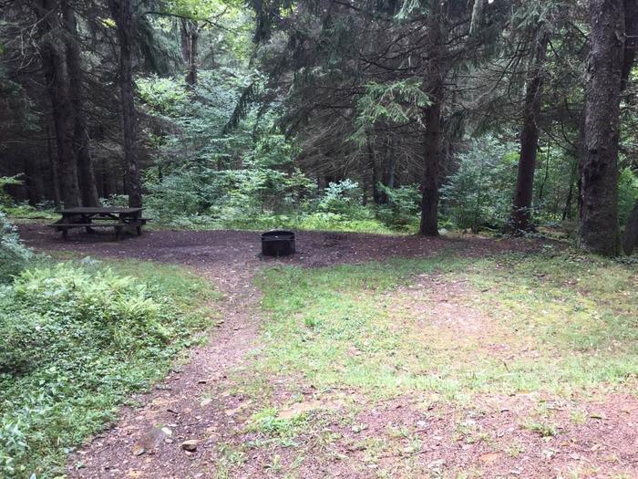 Loleta Recreation Area: Campsite 10