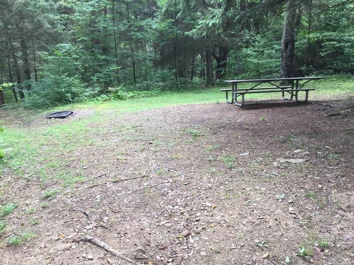 Loleta Recreation Area: Campsite 11