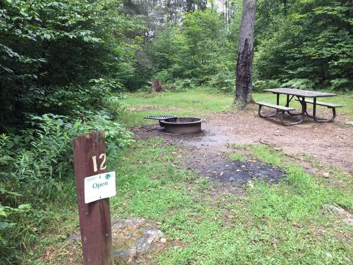 Loleta Recreation Area: Campsite 12