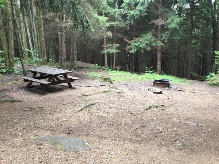 Loleta Recreation Area: Campsite 14