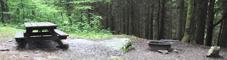 Loleta Recreation Area: Campsite 15