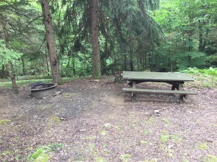 Loleta Recreation Area: Campsite 16