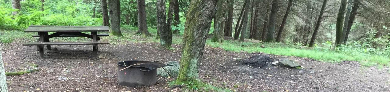 Loleta Recreation Area: Campsite 17
