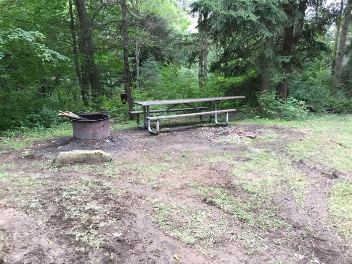 Loleta Recreation Area: Campsite 18