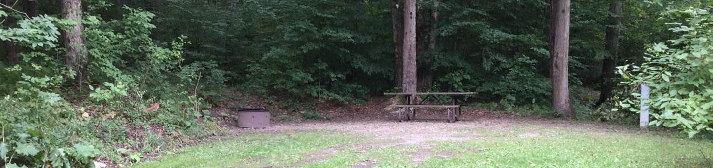 Loleta Recreation Area: Campsite 23