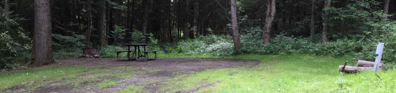 Loleta Recreation Area: Campsite 26