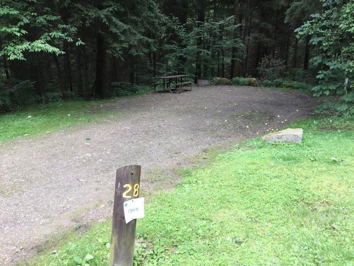 Loleta Recreation Area: Campsite 28