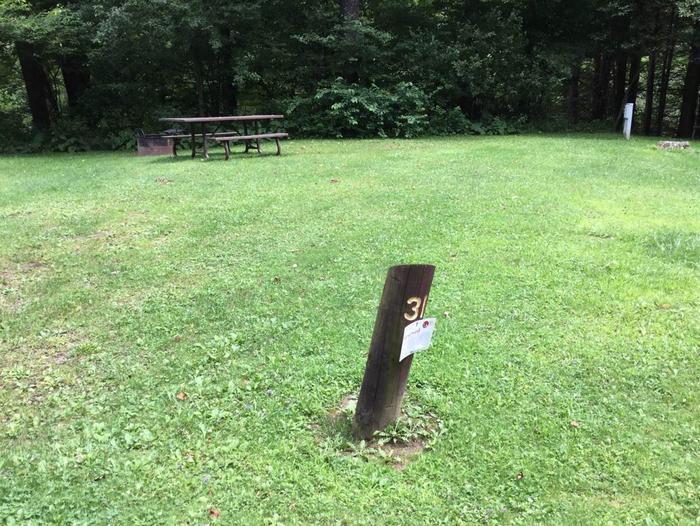 Loleta Recreation Area: Campsite 31
