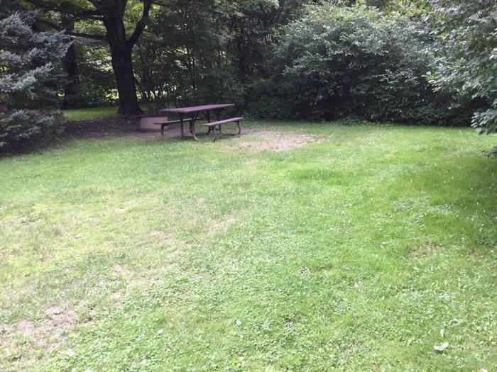 Loleta Recreation Area: Campsite 34