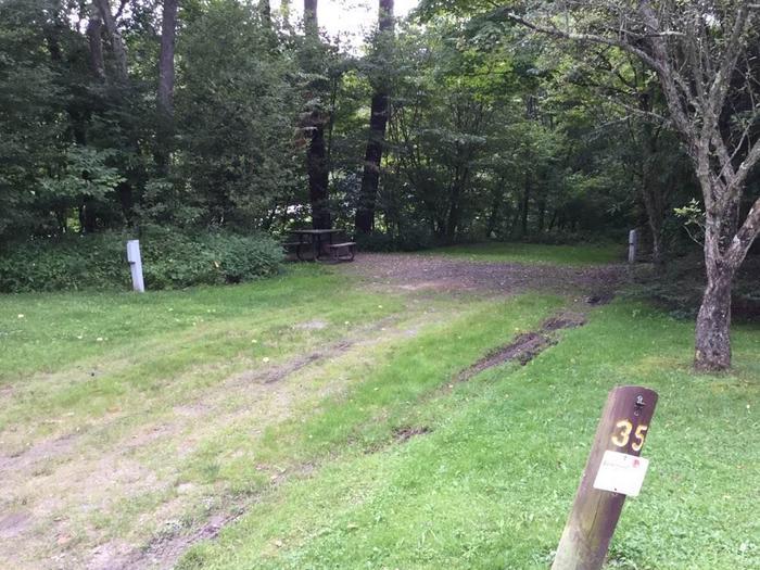 Loleta Recreation Area: Campsite 35