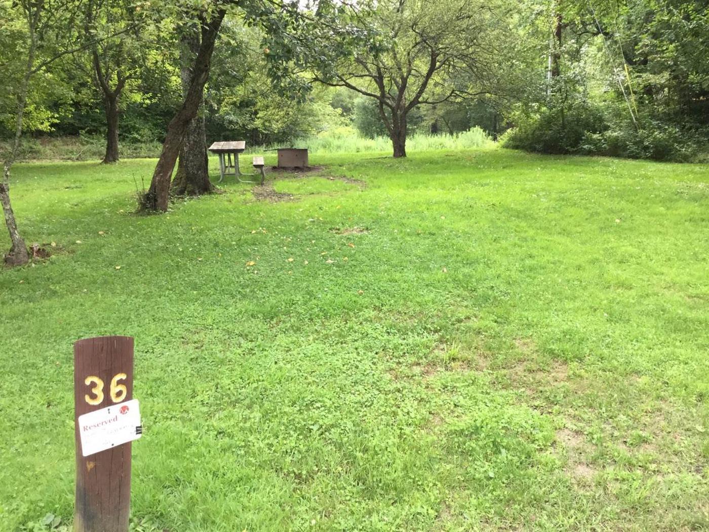 Loleta Recreation Area: Campsite 36