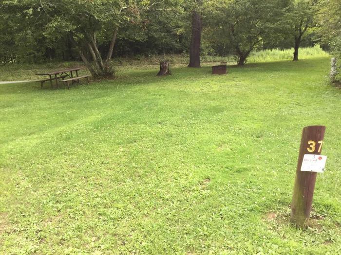Loleta Recreation Area: Campsite 37