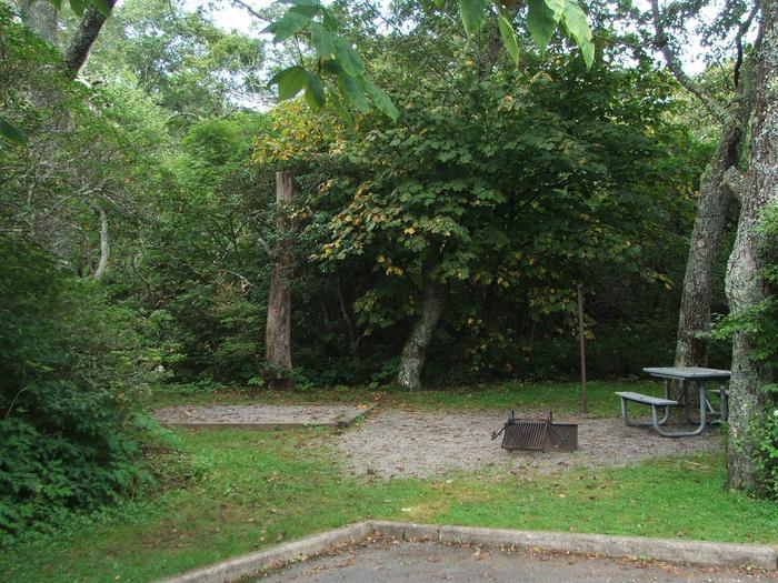 D Loop Site 29 - Tent Nonelectric