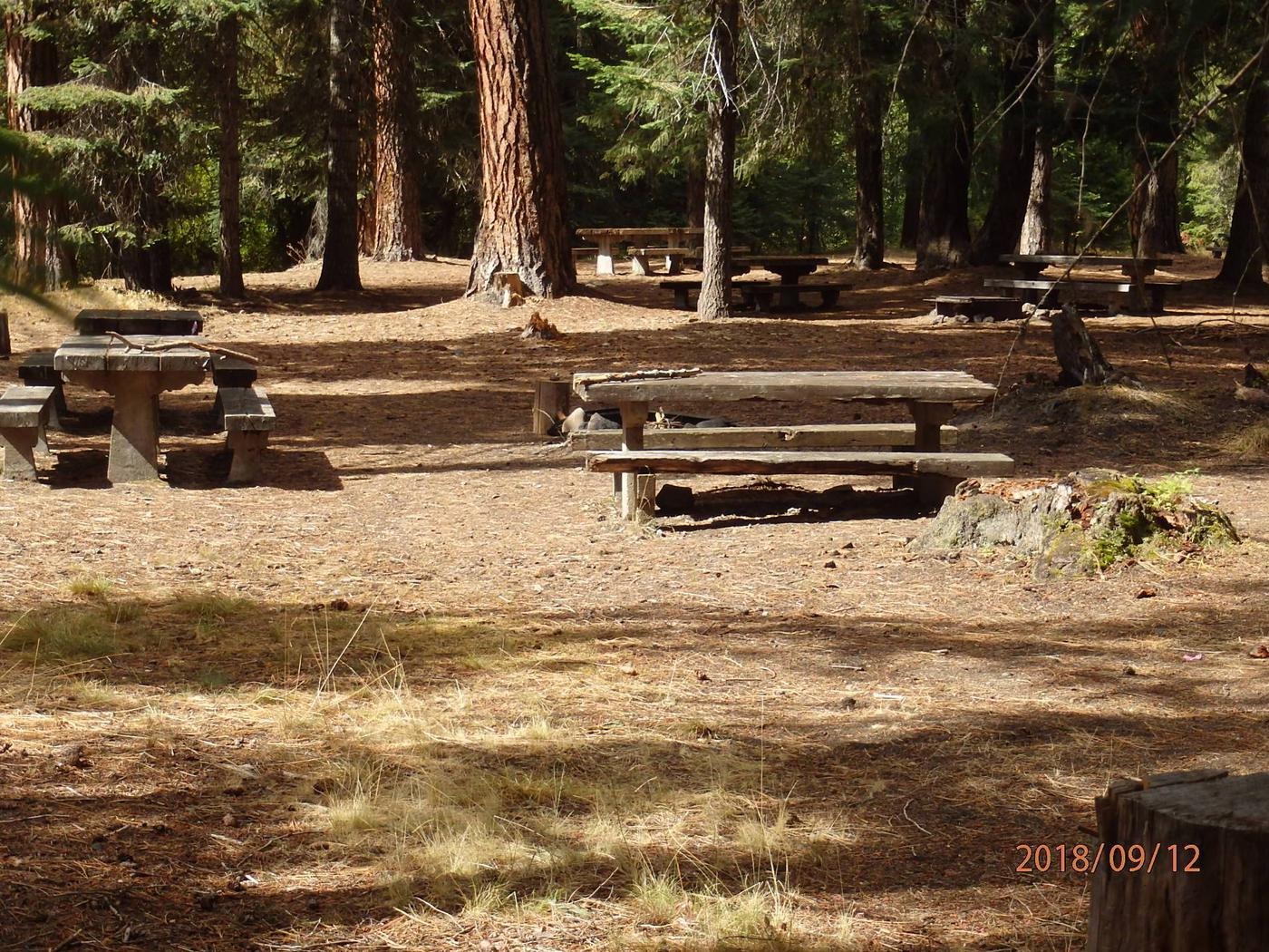 Kaner Flat Group SiteNice group site with access to the Little Naches River