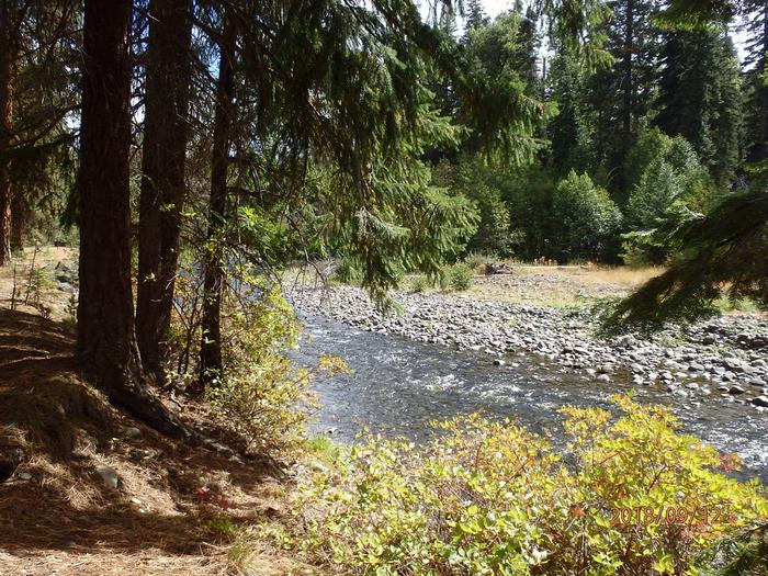 Little NachesNice views of the Little Naches River
