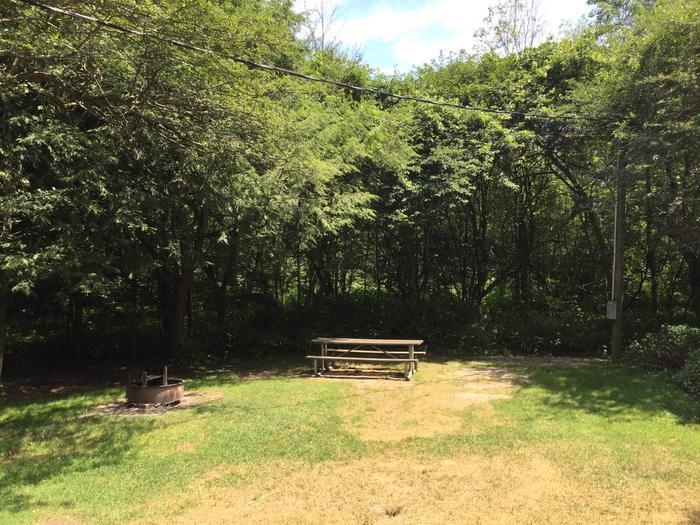 Buckaloons Site 29
