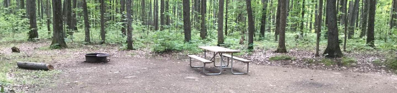 Tracy Ridge Recreation Area: Campsite 97