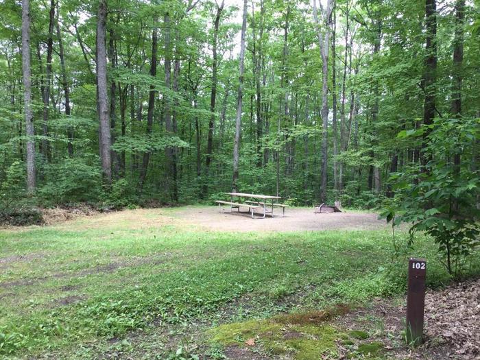 Tracy Ridge Recreation Area: Campsite 102