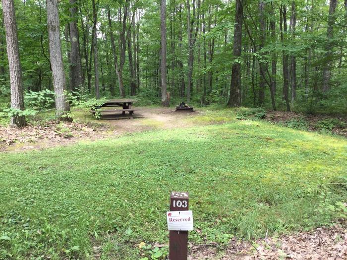 Tracy Ridge Recreation Area: Campsite 103