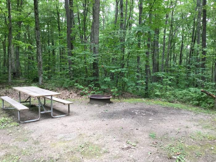 Tracy Ridge Recreation Area: Campsite 105