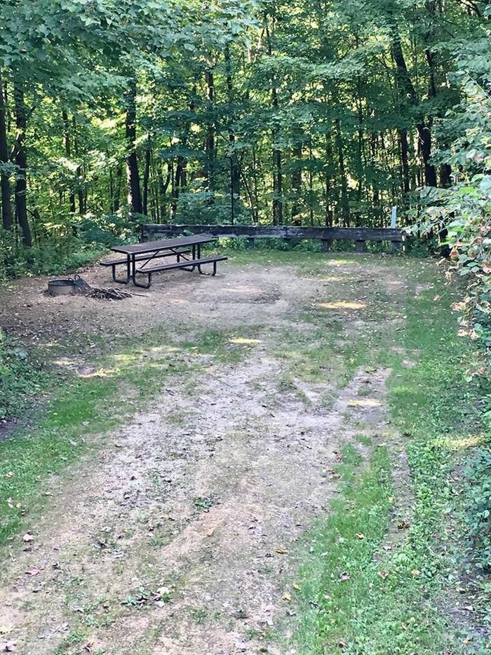 Site 5 ground image