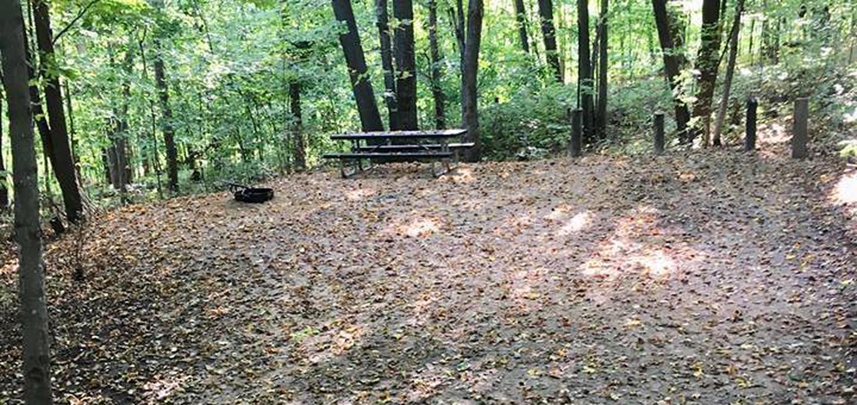 Site 15 ground image
