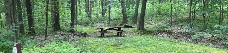 Tracy Ridge Recreation Area: Campsite 108