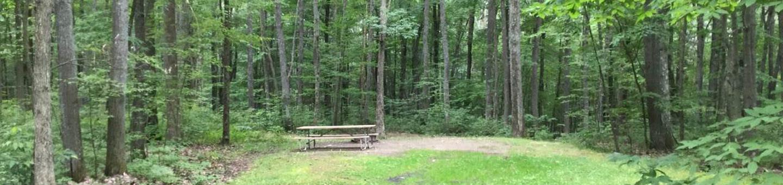 Tracy Ridge Recreation Area: Campsite 112