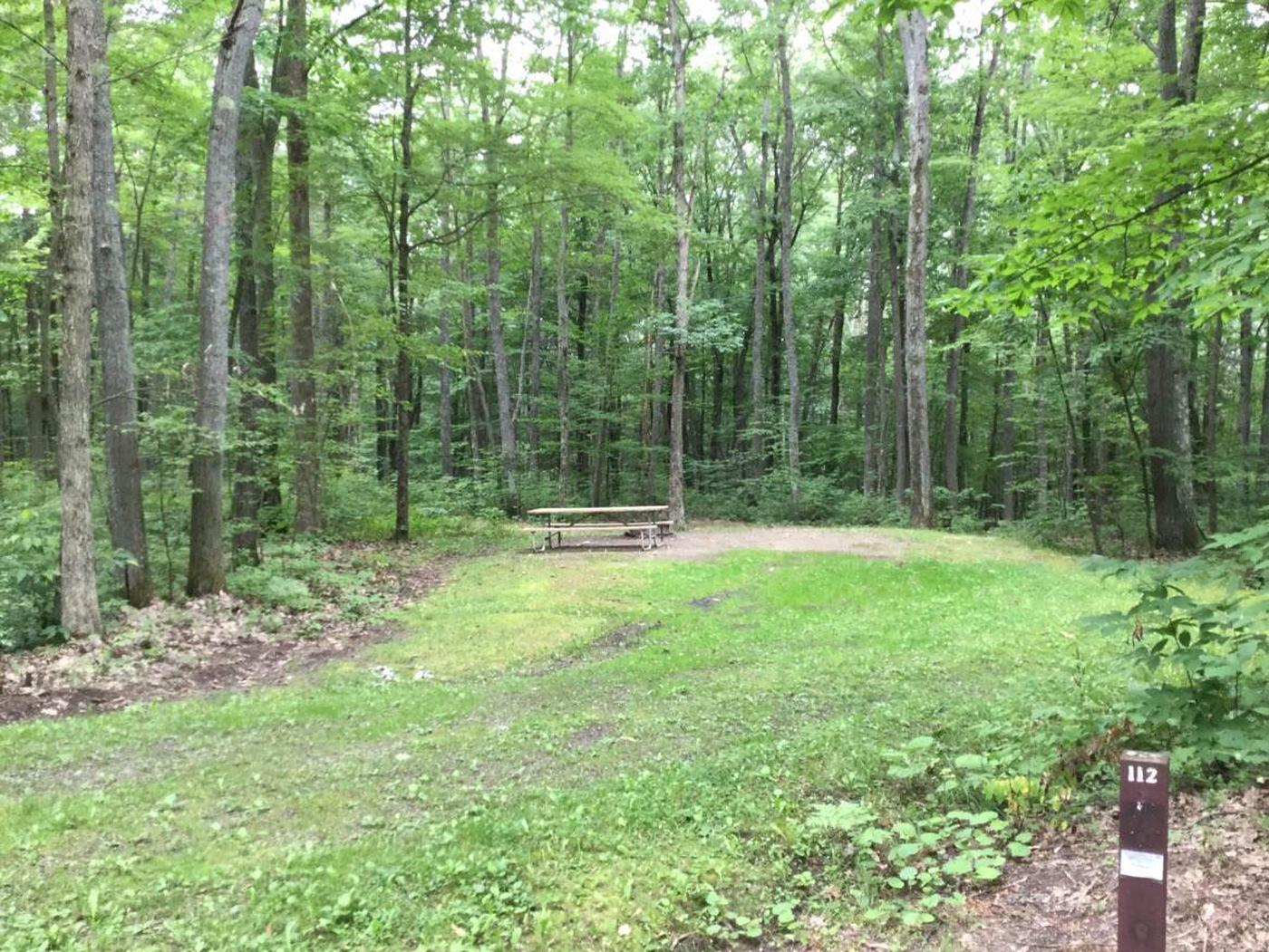 Tracy Ridge Recreation Area: Campsite 112