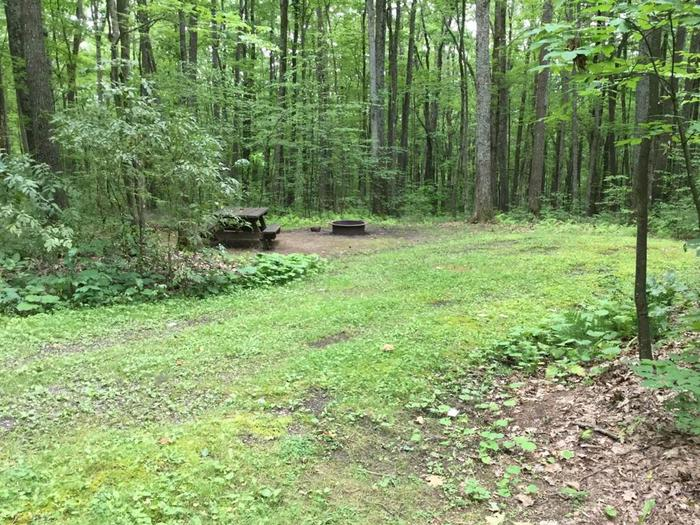 Tracy Ridge Recreation Area: Campsite 115