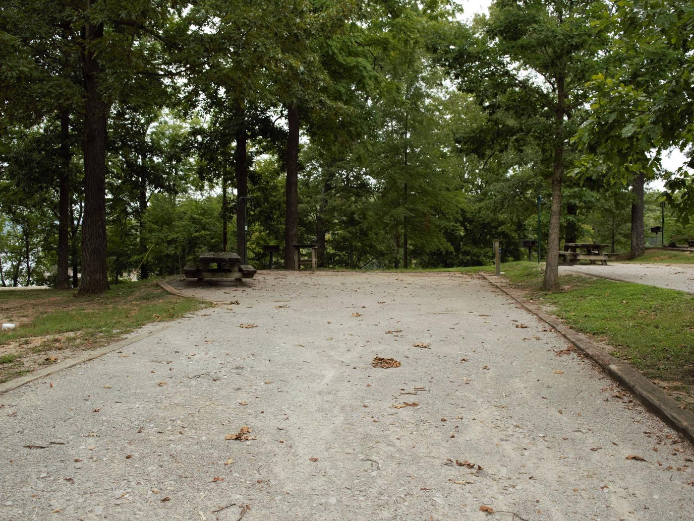 WILLOW GROVE CAMPGROUND SITE #40