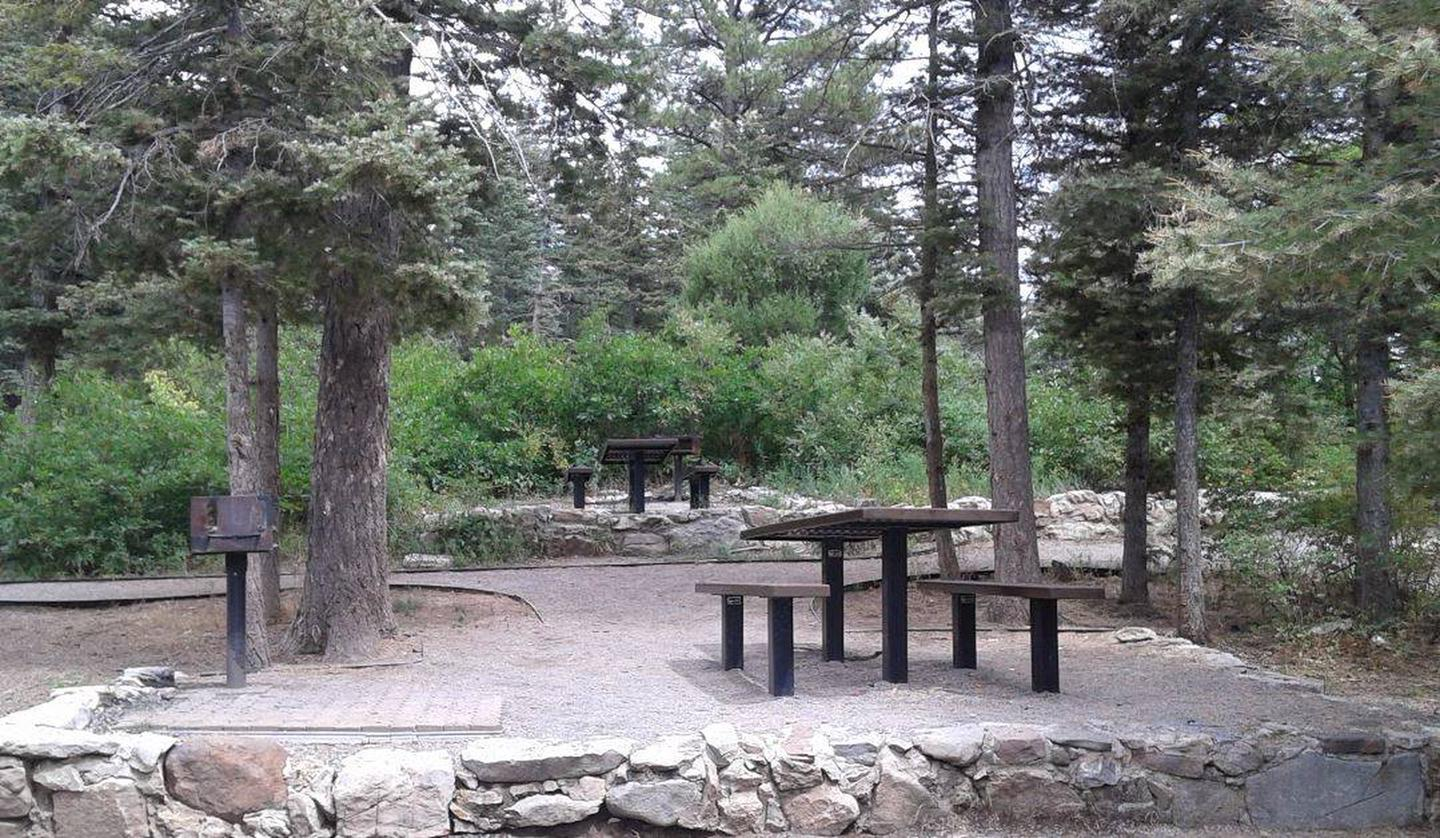 This is a picture of picnic tables and grillsBalsam Glade dispersed picnic tables (Non-Reservable)
