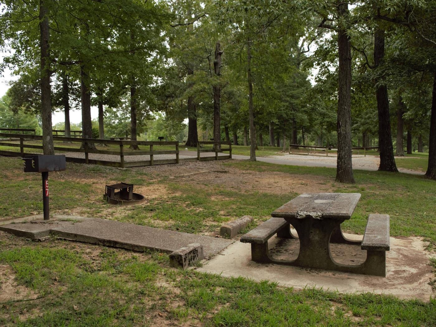 WILLOW GROVE CAMPGROUND SITE #57