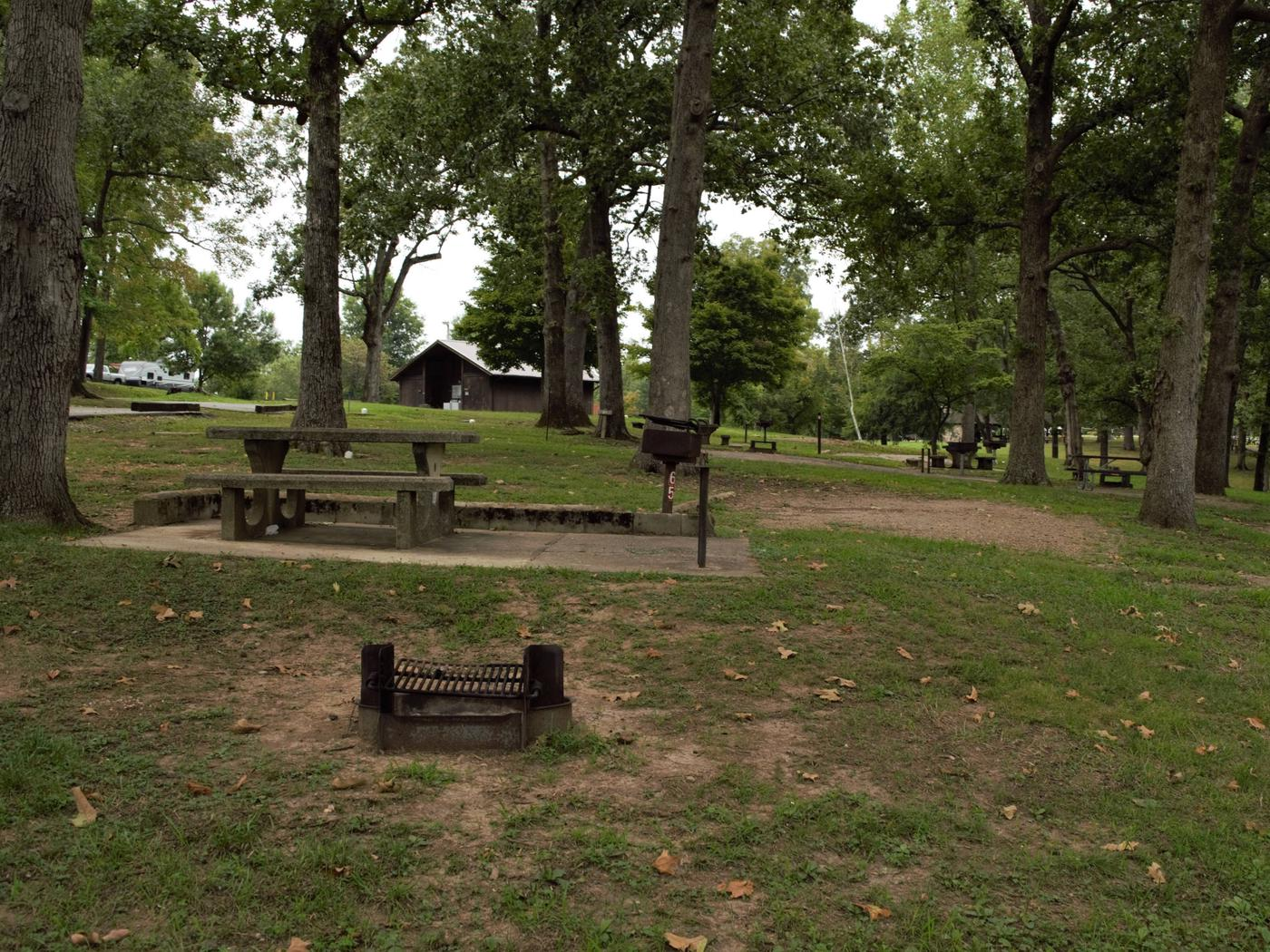 WILLOW GROVE CAMPGROUND SITE #65