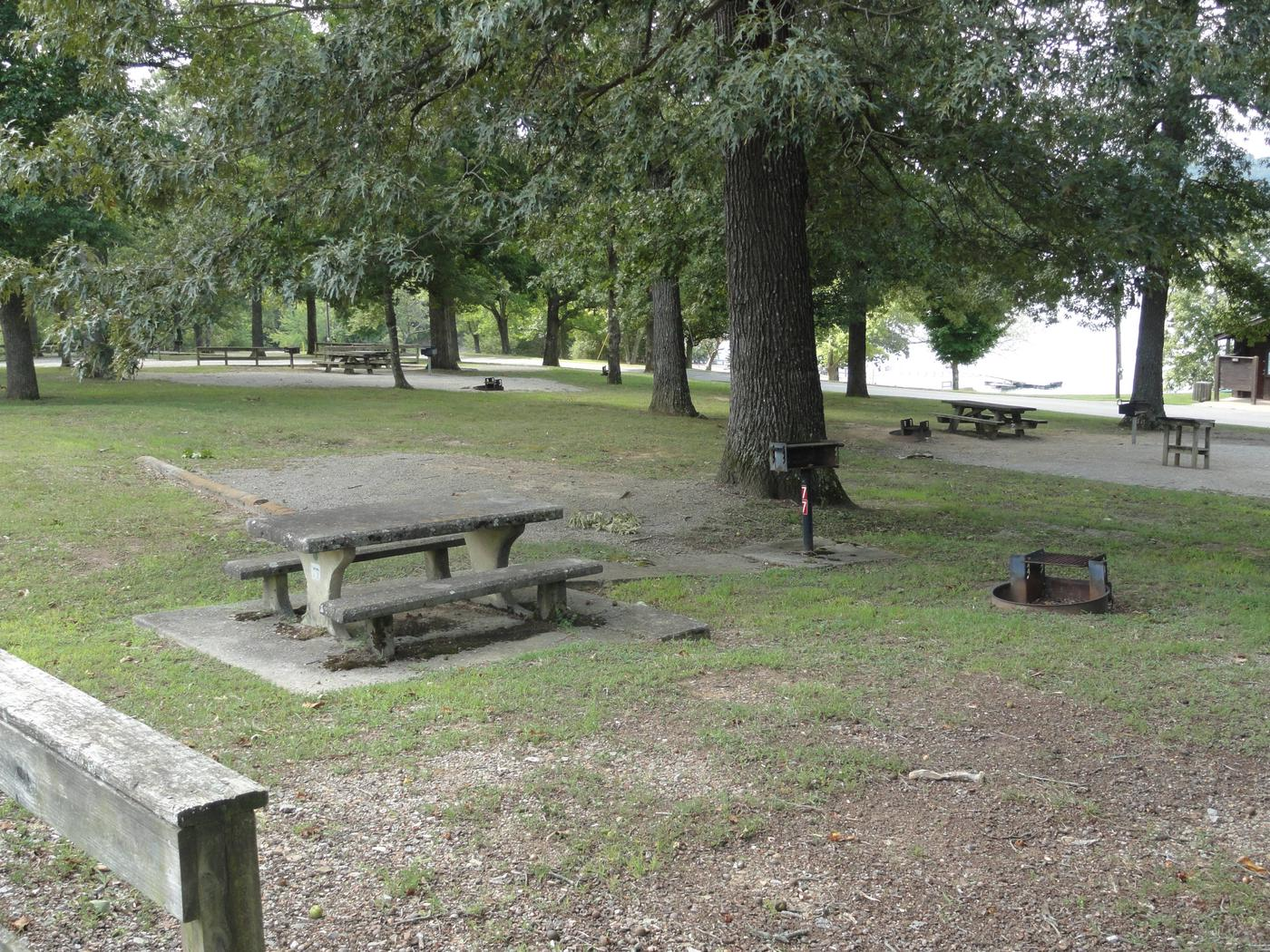 WILLOW GROVE CAMPGROUND SITE #77