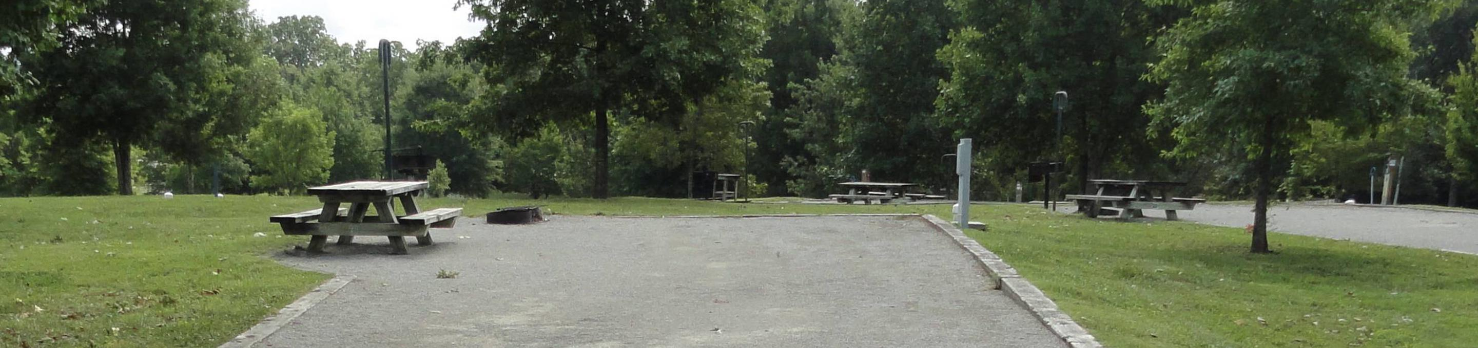 WILLOW GROVE CAMPGROUND SITE #78