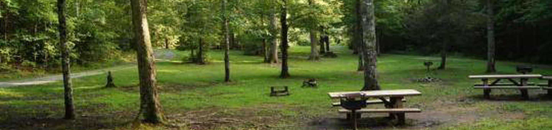 McNabb Group Camp