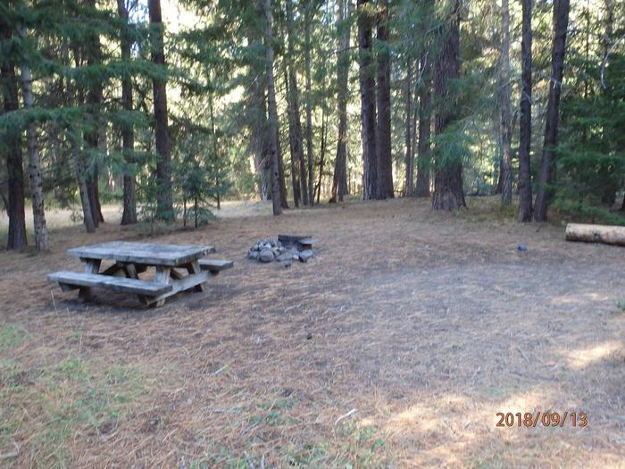 Kaner Flatsite offers seclusion with large trees