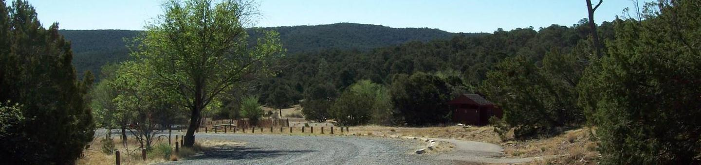 This is a picture of a road connecting the group sitesRoad Between Robin and Jay group camp sites