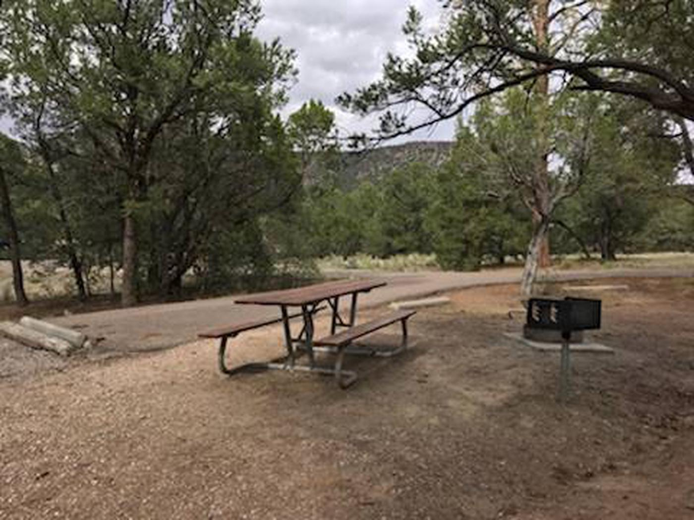 This is a picture of a campsite at Coal Mine CGA campsite at Coal Mina CG