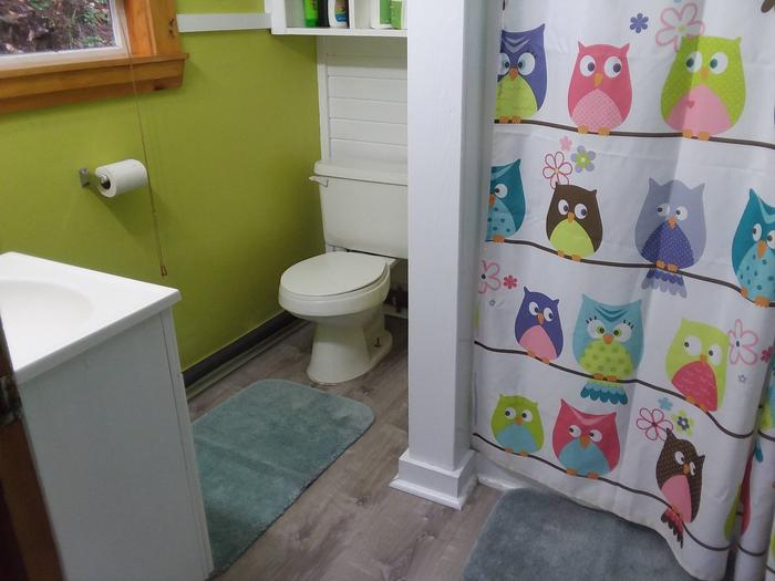 Bathroom - toilet, sink, and shower curtain with owls.Newly refurbished bathroom with new flooring in the Forest Glen Guard Station.