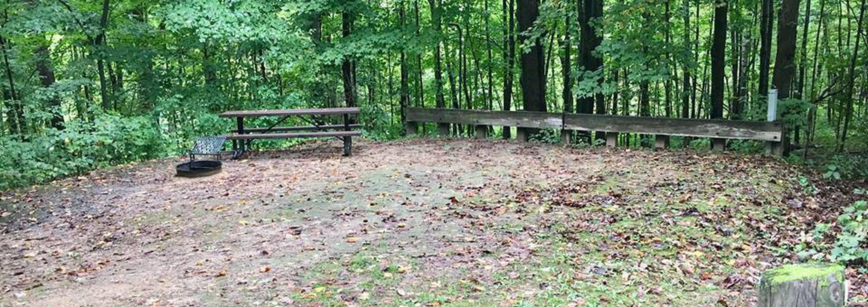 Site 3 ground image