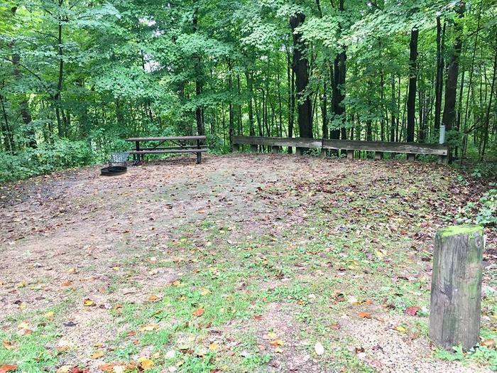 Site 3 ground image (entire photo)