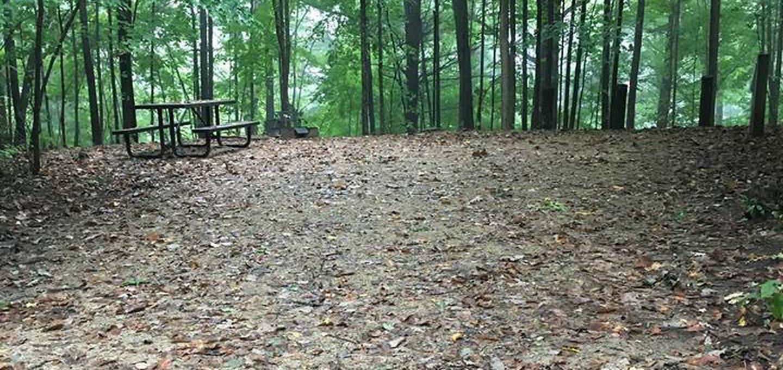 Site 11 ground image