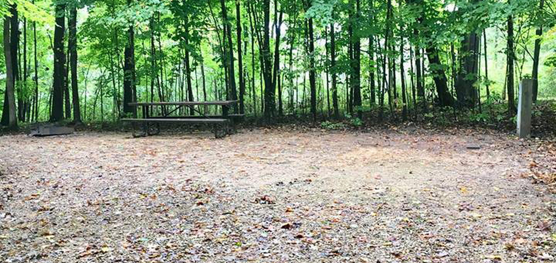 Site 14 ground image