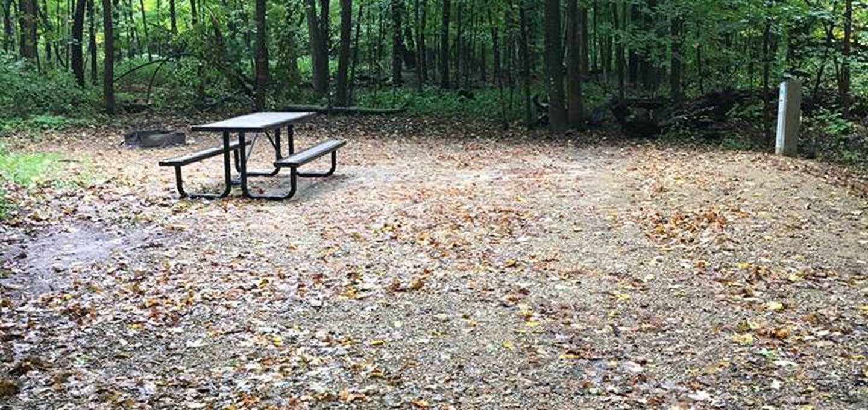 Site 23 ground image