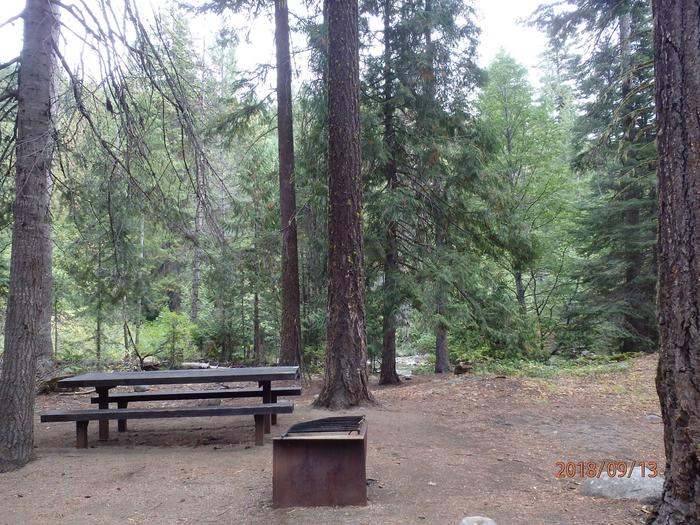 American ForksNice site for a single tent, picnic shelter nearby.